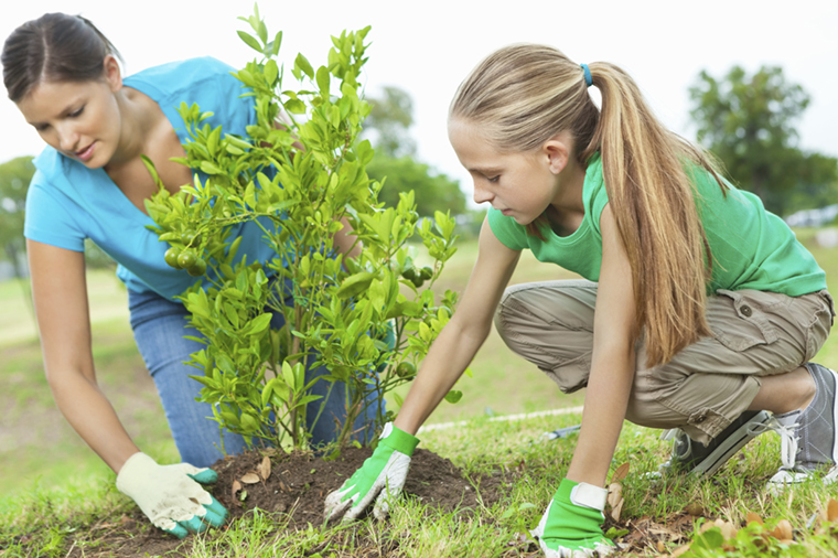 stock-photo-21450904-planting-an-orange-tree-together-on-arbor-day-environmental-conservation