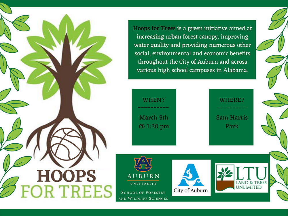 Hoops for Trees